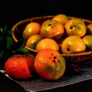 citricos-2